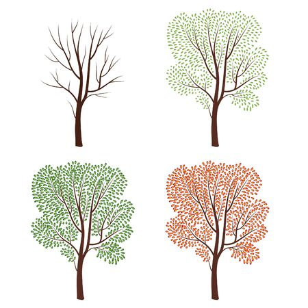spring summer: Four seasons nature concept. Tree silhouette isolated set. Plant with and without leaves. Nature wildlife design element over white background. Winter, spring, summer, fall trees collection