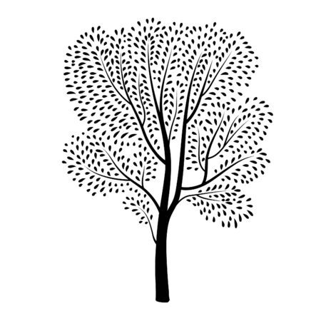 graphically: Tree silhouette isolated. Plant with leaves. Spring nature wildlife design element Blooming tree background