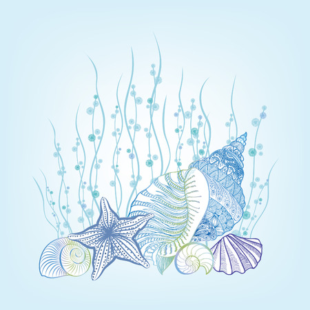 stillife: SeaShell background Summer Holiday Concept. Vector Background with Seashells, Sea Star and Sand. Hand Drawn Etching Style Underwater Marine life stillife
