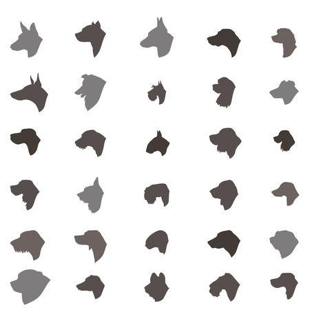 pure breed: Dog head silhouette icon set. Dog breed set. Different dos breed vector collection Domestic animal  isolated illustration