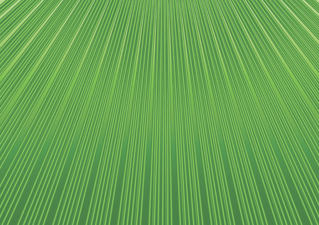 stripped: Abstract geometric background with diagonal green lines Floral structure grid stripped pattern