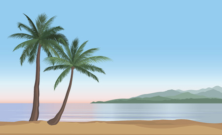 resort: Palm tree on the ocean beach. Nature floral landscape Tropical beach resort skyline. Summer holidays background. Seaside Sunrise View Poster. Vector  resort wallpaper