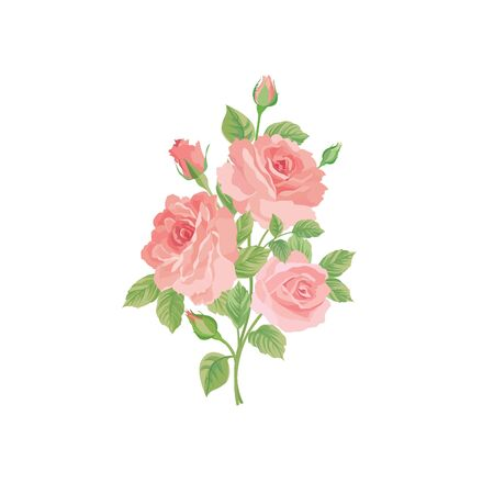 Floral bouquet isolated over white background. Flower rose posy. Greeting card with flowers roses. Flourish wallpaper