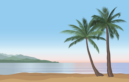 sunrise ocean: Palm tree on the ocean beach. Nature floral landscape Tropical beach resort skyline. Summer holidays background. Seaside Sunrise View Poster. Vector  resort wallpaper