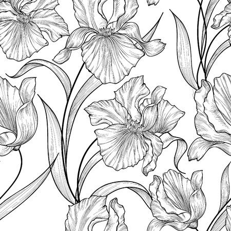 striped: Floral seamless pattern. Flower iris swirl background. Floral  ornamental monohrome texture with flowers. Spring flourish garden engraving Illustration