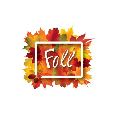 chokeberry: Fall leaves sign. Autumn leaf frame. Nature symbol with Fall lettering isolated over white background. Illustration