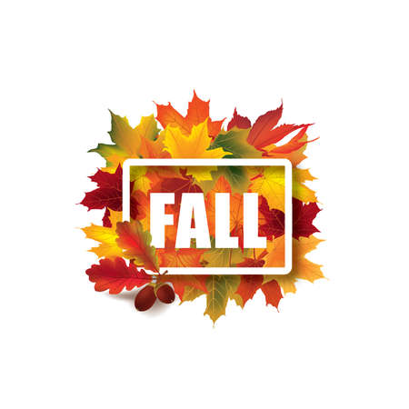 fall leaves on white: Fall leaves sign. Autumn leaf frame. Nature symbol with Fall lettering isolated over white background. Illustration