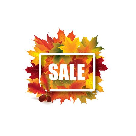 fall leaves on white: Fall leaves sign. Autumn leaf frame. Nature symbol with Sale lettering isolated over white background.
