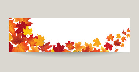 Fall leaf nature banner. Autumn leaves background. Season floral horizontal wallpaper Illustration