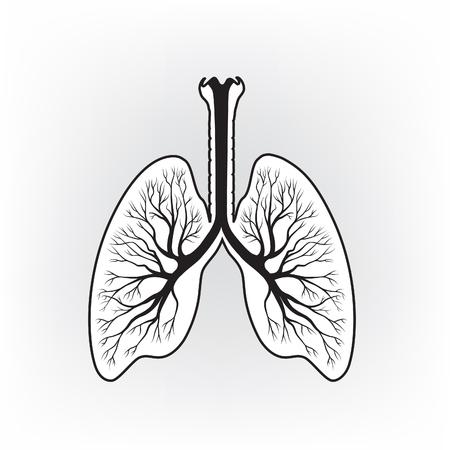 respire: Lungs sign. Human internal organ anatomy icon