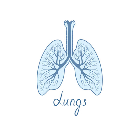 Lungs sign. Human internal organ anatomy icon