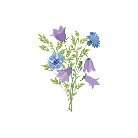 wildflowers: Flowers isolated. Floral summer bouquet. Meadow nature decor with bluebells and  blue cornflowers