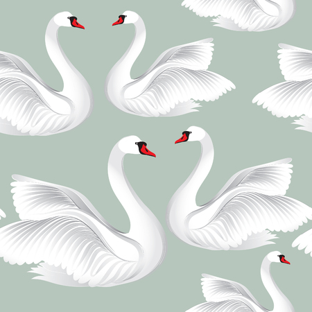 White birds in love seamless pattern. Wildlife background. Swimming swans couples