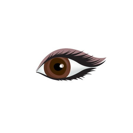 Womans eye icon. Sexy eye with perfectly shaped eyebrow isolated on white background.
