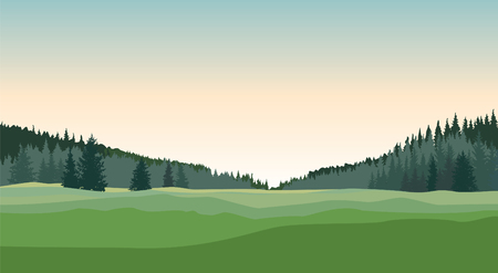 Rural landscape with forest, meadows and fields. Countryside nature skyline background