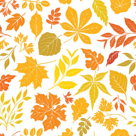 Autumn leaves stylish background. Fall seamless pattern with hand drawn leaves. Seasonal nature backdrop.
