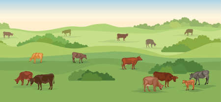 Rural dairy farm landscape with cows over seamless panoramic horizon. Hills, meadows, trees and fields skyline. Summer nature background. Pasture grass for cows.