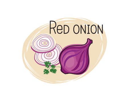 Red onion icon. Full and sliced onion isolated on white background with lettering Red onion. Vegetable stylish drawn symbol onion