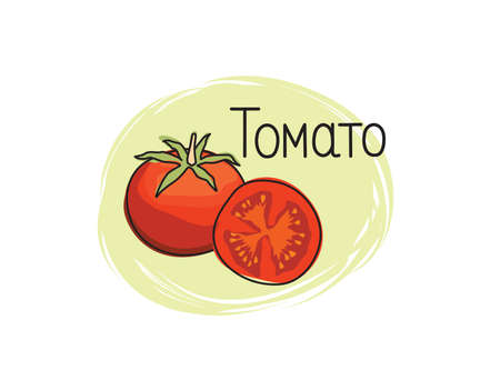 Red tomato icon. Full and sliced tomato isolated on white background with lettering Tomato. Vegetable stylish drawn symbol tomato