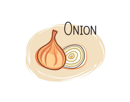 Onion icon. Half and full slice onion isolated on white background with lettering onion Vegetable stylish drawn symbol onion