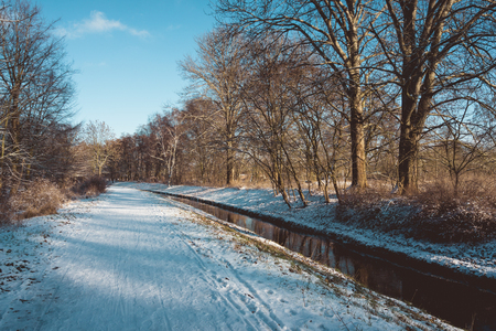 branched: Canal passing through winter snow between leafless bare branched deciduous trees in a country landscape