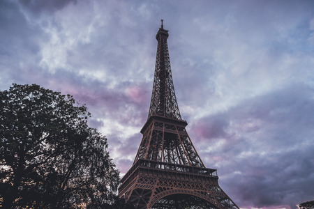 Eiffel Tower, Paris, France against a colorful pink to purple sunset or sunrise sky viewed low angle looking up past a leafy tree