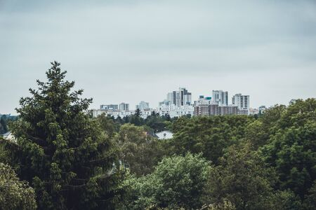 Beautiful image of city skyline on overcast day as seen from a beyond a thick grove of trees