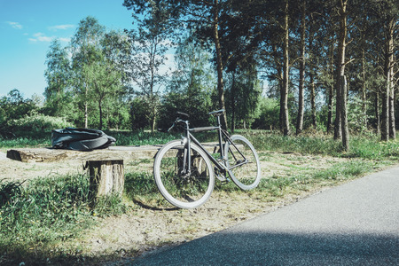 bicycle is lying on a bank in nature forest of berlin, germany