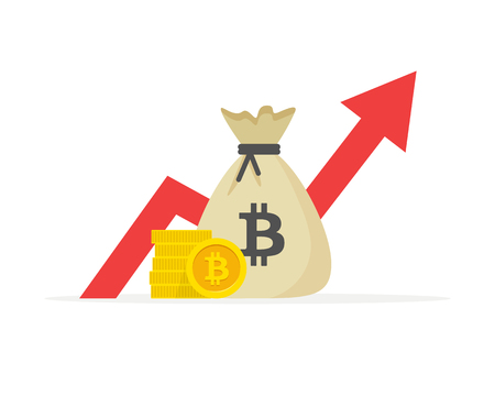 Financial performance, bitcoin business productivity, statistic report, mutual fund, return on investment, finance consolidation, budget planning and management, income growth concept Ilustração