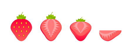 Set of fruits. Summer fruit collection. Fruits strawberry. Vegetarian and ecology food. Vector illustration Stock Vector - 124526627