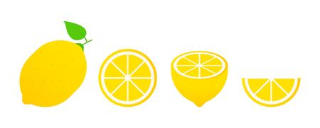 Set of fruits. Summer fruit collection. Fruits lemon. Vegetarian and ecology food. Vector illustration Ilustrace
