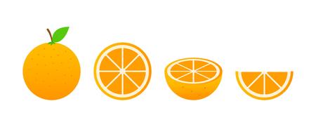 Set of fruits. Summer fruit collection. Fruits orange. Vegetarian and ecology food. Vector illustration