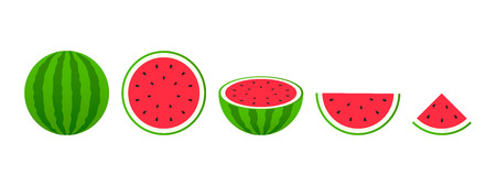 Set of fruits. Summer fruit collection. Fruits watermelon. Vegetarian and ecology food. Vector illustration Stock Vector - 124526636
