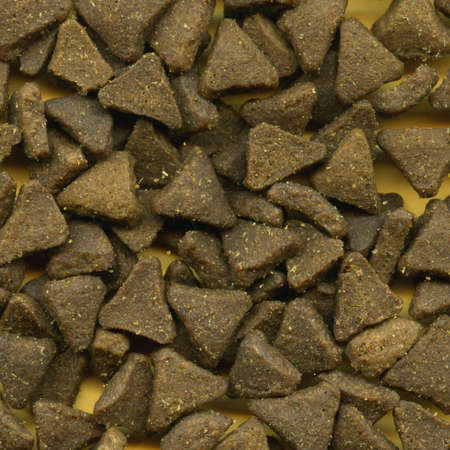 kibble: Triangular Kitty Kibble Stock Photo