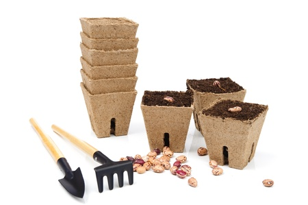 An image of flowerpots with seeds and garden tools Stock Photo - 13610046