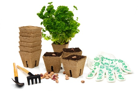 parsel: An image of flowerpots with parsel and garden tools