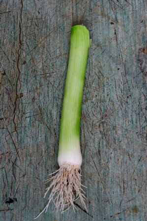 An image of a root of green leek