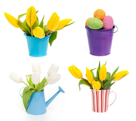Set of tulips and eggs in cup and buckets on white