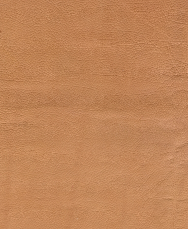 Tan leather texture background. Close-up photo Stock Photo