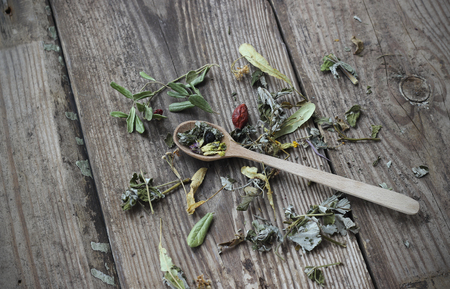 plantas medicinales: Cuchara de té herbsl hecho de varias plantas medicinales, atención selectiva
