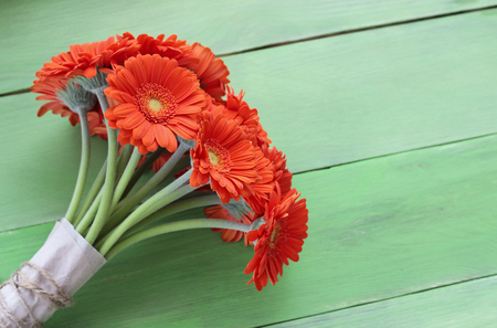 gerbera daisies: Bouquet of orange gerbera daisies, green plank background, free text place, holiday concept