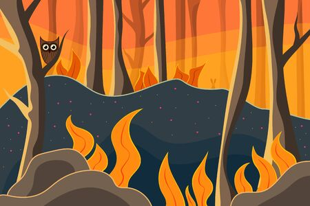 Beautiful forest with owl and rabbit. Nature at sunset.  Outdoor vector illustration design. Beautiful landscape.