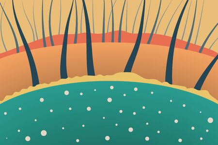 Outdoor vector illustration design. Nature at noon. Beautiful landscape with forest and trees. Illustration for your project.  向量圖像