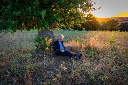 Senior businessman with laptop working under the magic tree at sunset