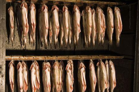 Fresh smoked fish called trout Standard-Bild