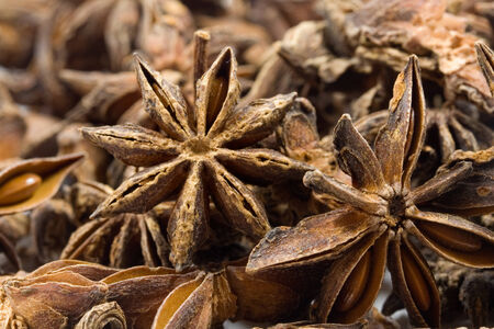 aniseed: spicy aniseed for christmas bakery