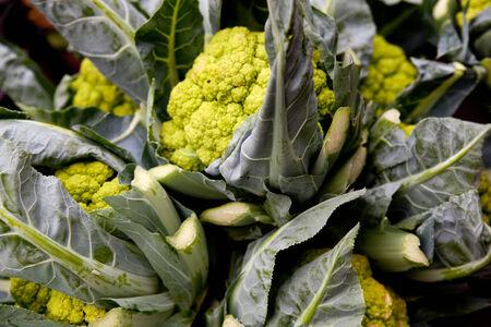 Fresh cauliflower sold at a market
