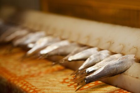 sprats: fresh sprats prepared to be smoked Stock Photo