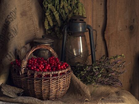 Autumn still life with retro kerosene lamp, basket, viburnum berries, herbs and old sackcloth