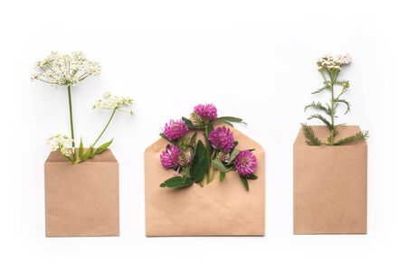 Healthy herbal eco gift concept